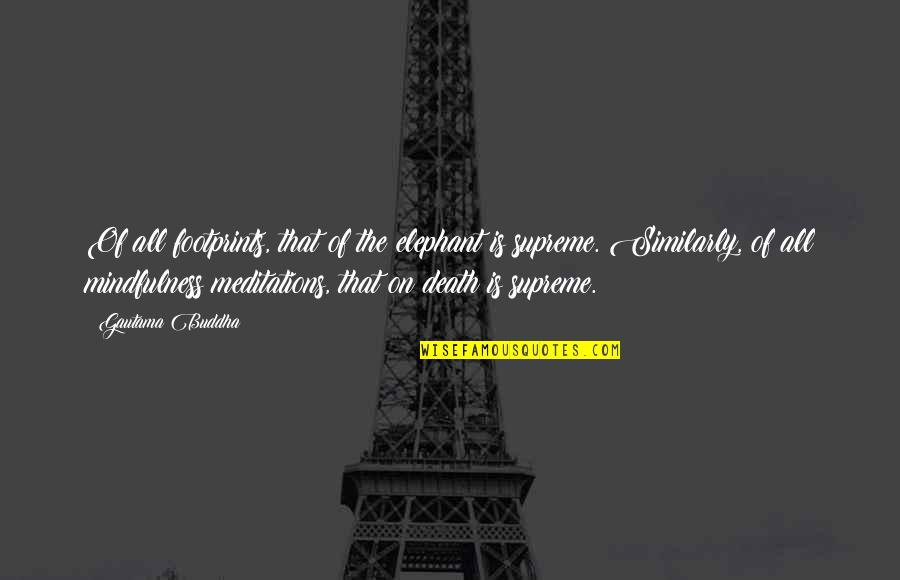 Death Buddhist Quotes By Gautama Buddha: Of all footprints, that of the elephant is