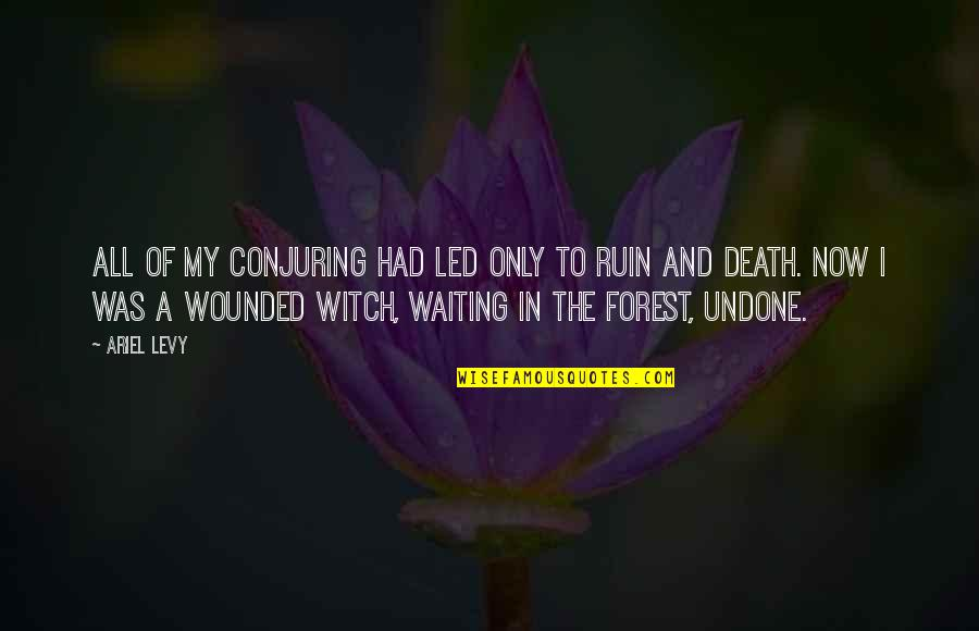 Death Loss Grief Quotes By Ariel Levy: All of my conjuring had led only to