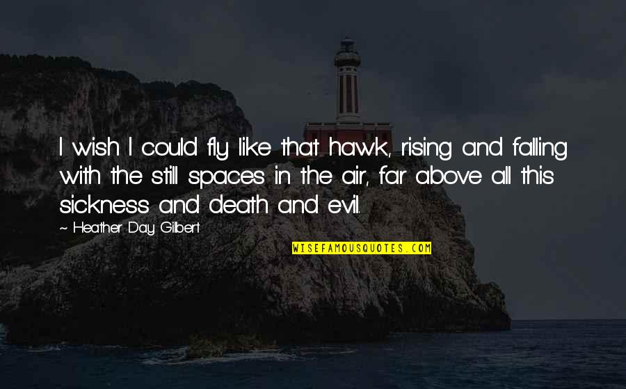 Death Wish Quotes By Heather Day Gilbert: I wish I could fly like that hawk,