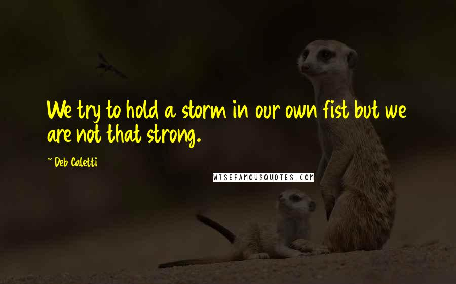 Deb Caletti quotes: We try to hold a storm in our own fist but we are not that strong.