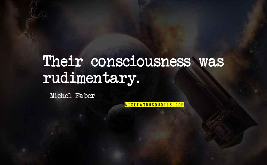 Debi Austin Quotes By Michel Faber: Their consciousness was rudimentary.