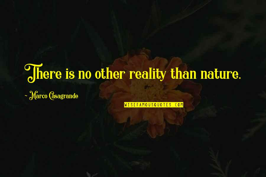 Decembrist Revolt Quotes By Marco Casagrande: There is no other reality than nature.