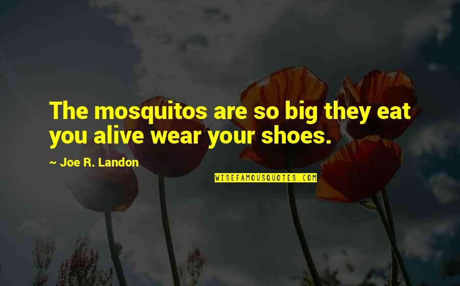 Decepcionada Quotes By Joe R. Landon: The mosquitos are so big they eat you