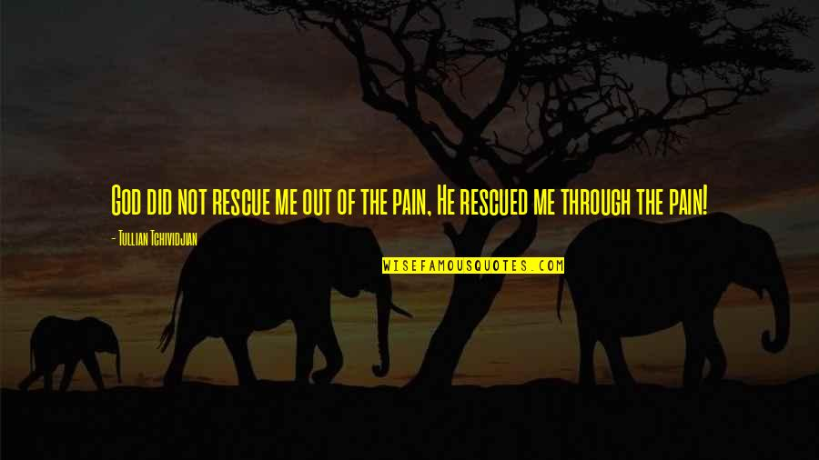 Declinists Quotes By Tullian Tchividjian: God did not rescue me out of the