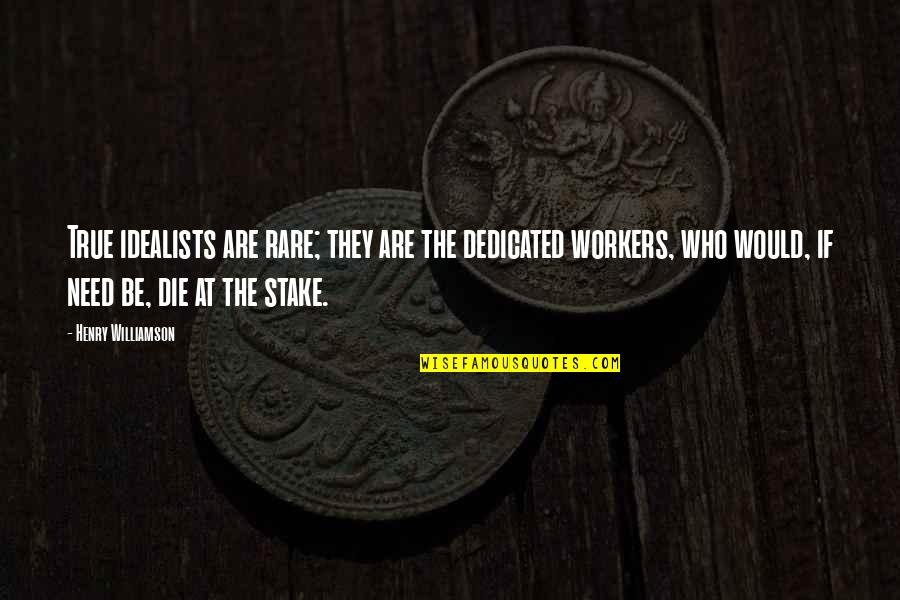 Dedicated Workers Quotes By Henry Williamson: True idealists are rare; they are the dedicated