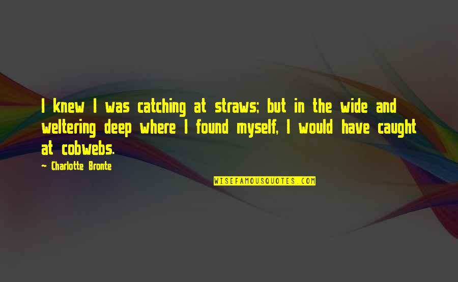 Deep And Wide Quotes By Charlotte Bronte: I knew I was catching at straws; but