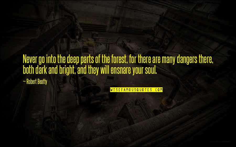 Deep In Your Soul Quotes By Robert Beatty: Never go into the deep parts of the