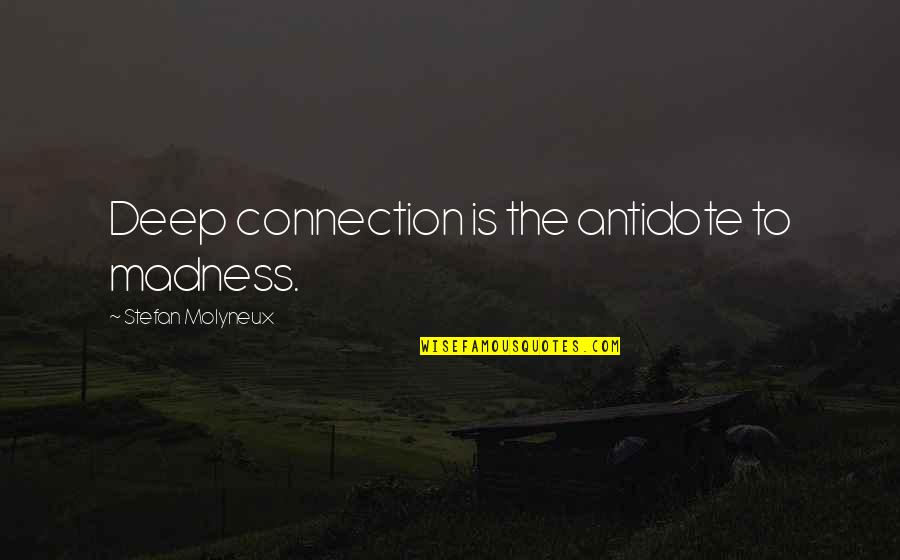 Deep Psychology Quotes By Stefan Molyneux: Deep connection is the antidote to madness.