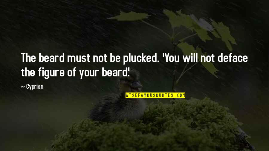Deface Quotes By Cyprian: The beard must not be plucked. 'You will