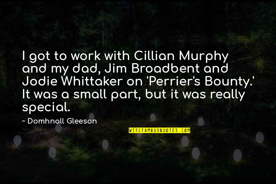 Defamiliarization Quotes By Domhnall Gleeson: I got to work with Cillian Murphy and