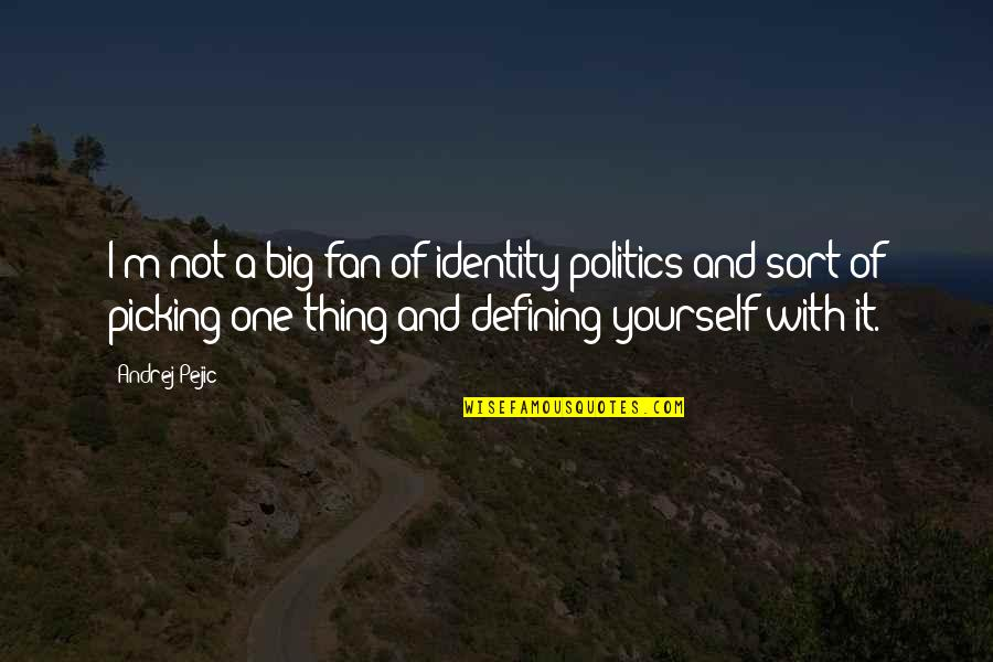 Defining Yourself Quotes By Andrej Pejic: I'm not a big fan of identity politics