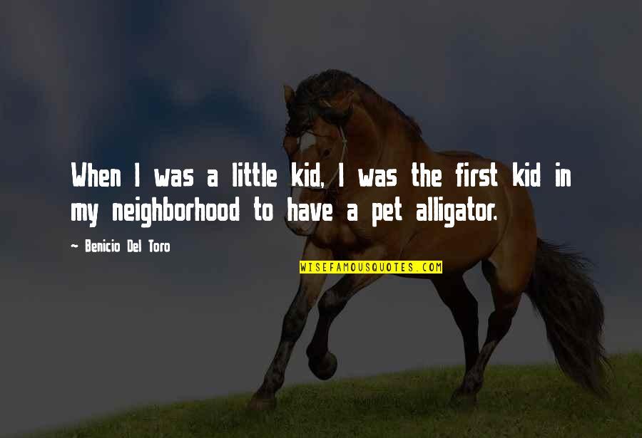 Del Toro Quotes By Benicio Del Toro: When I was a little kid, I was