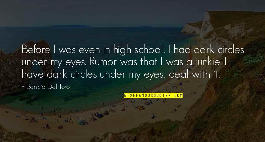 Del Toro Quotes By Benicio Del Toro: Before I was even in high school, I