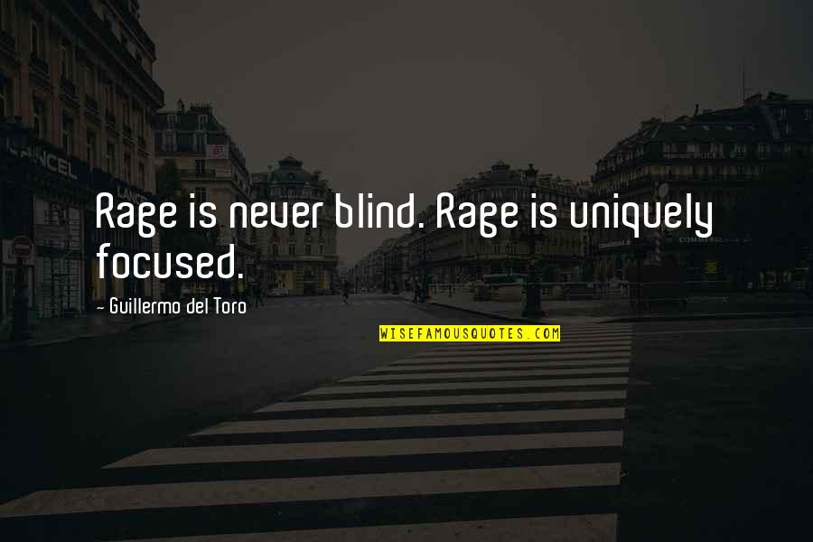 Del Toro Quotes By Guillermo Del Toro: Rage is never blind. Rage is uniquely focused.