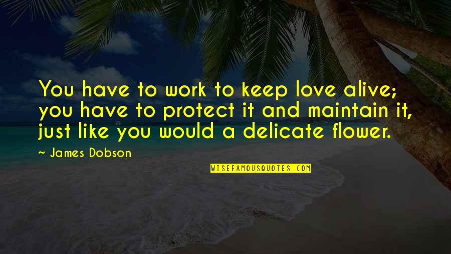 Delicate Love Quotes By James Dobson: You have to work to keep love alive;