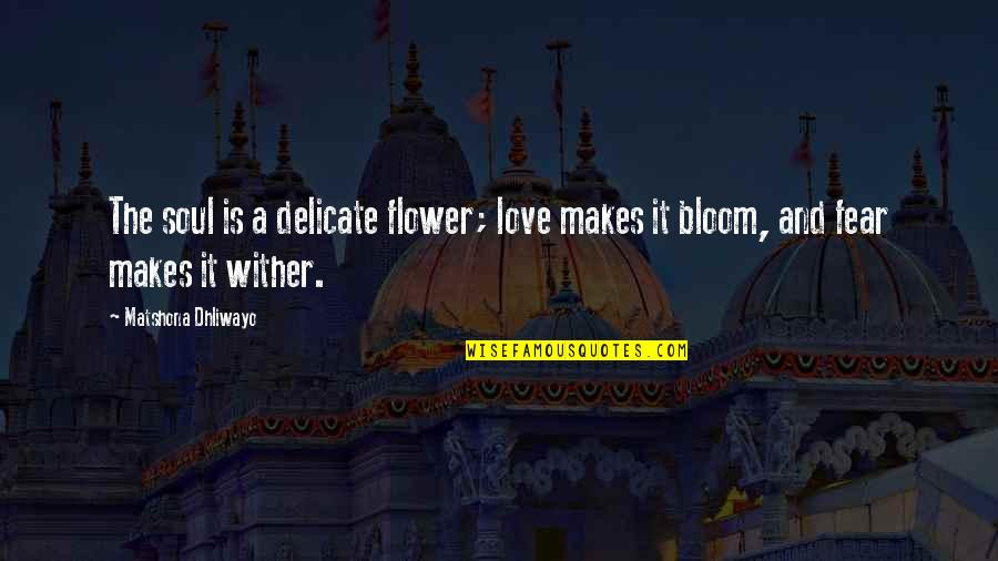 Delicate Love Quotes By Matshona Dhliwayo: The soul is a delicate flower; love makes