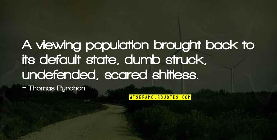 Delong Quotes By Thomas Pynchon: A viewing population brought back to its default