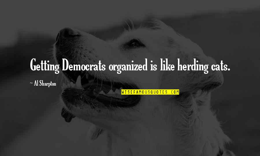 Democrats Quotes By Al Sharpton: Getting Democrats organized is like herding cats.