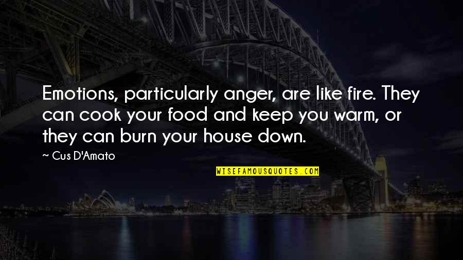 D'emotion Quotes By Cus D'Amato: Emotions, particularly anger, are like fire. They can