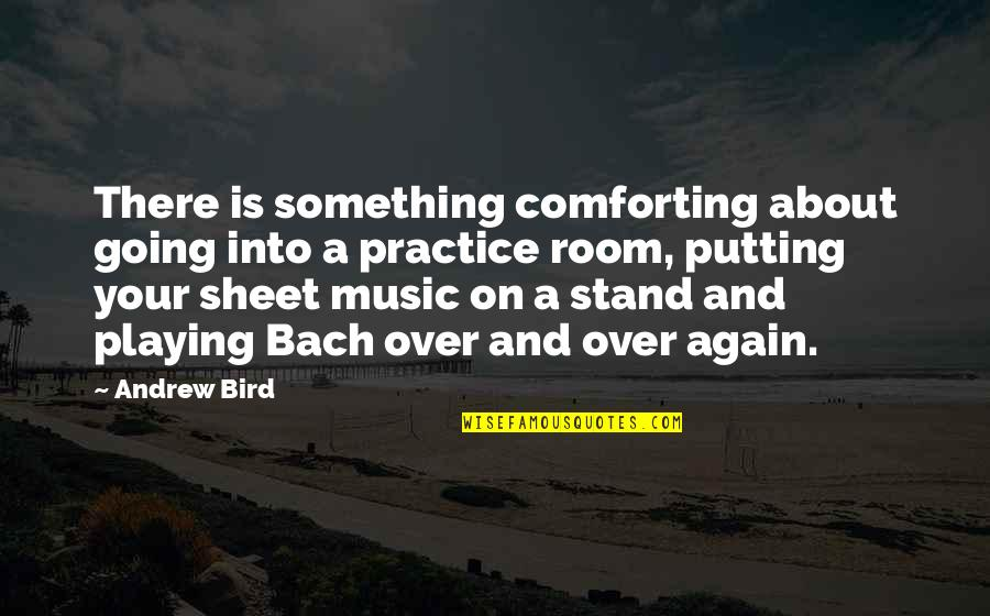 Dena's Quotes By Andrew Bird: There is something comforting about going into a