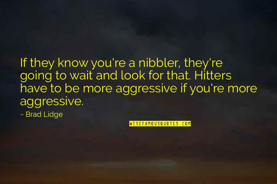 Deniable Quotes By Brad Lidge: If they know you're a nibbler, they're going
