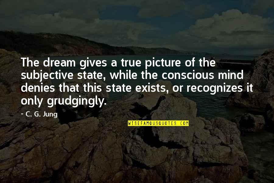 Denies Quotes By C. G. Jung: The dream gives a true picture of the