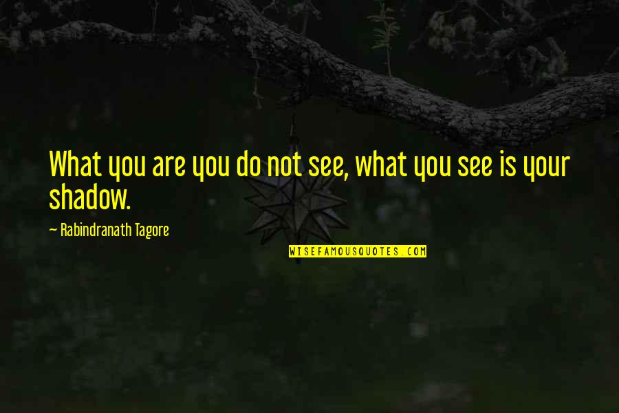 Deplores Quotes By Rabindranath Tagore: What you are you do not see, what