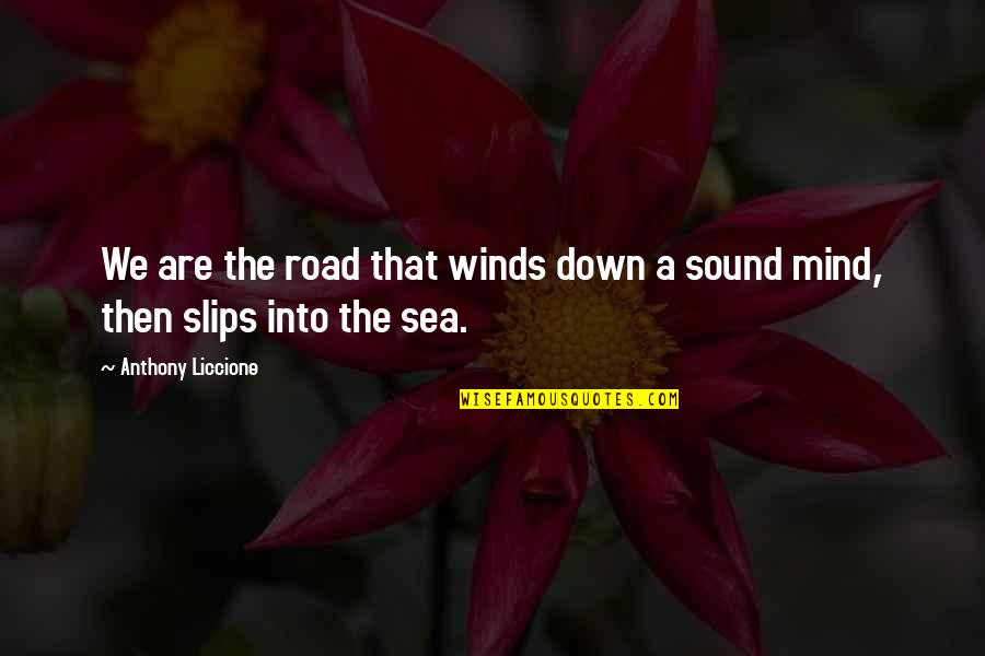 Depth Of Sea Quotes By Anthony Liccione: We are the road that winds down a