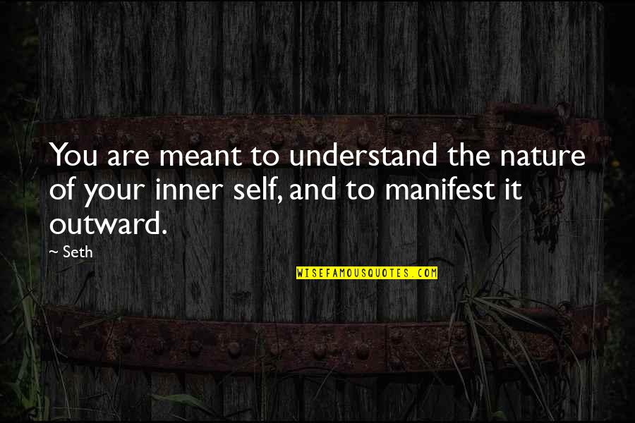Derek Gervais Quotes By Seth: You are meant to understand the nature of