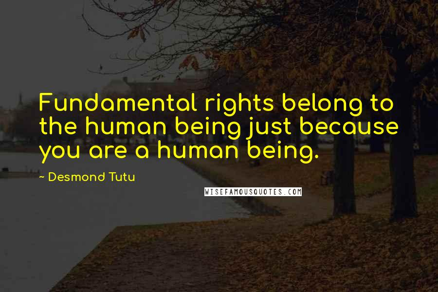 Desmond Tutu quotes: Fundamental rights belong to the human being just because you are a human being.