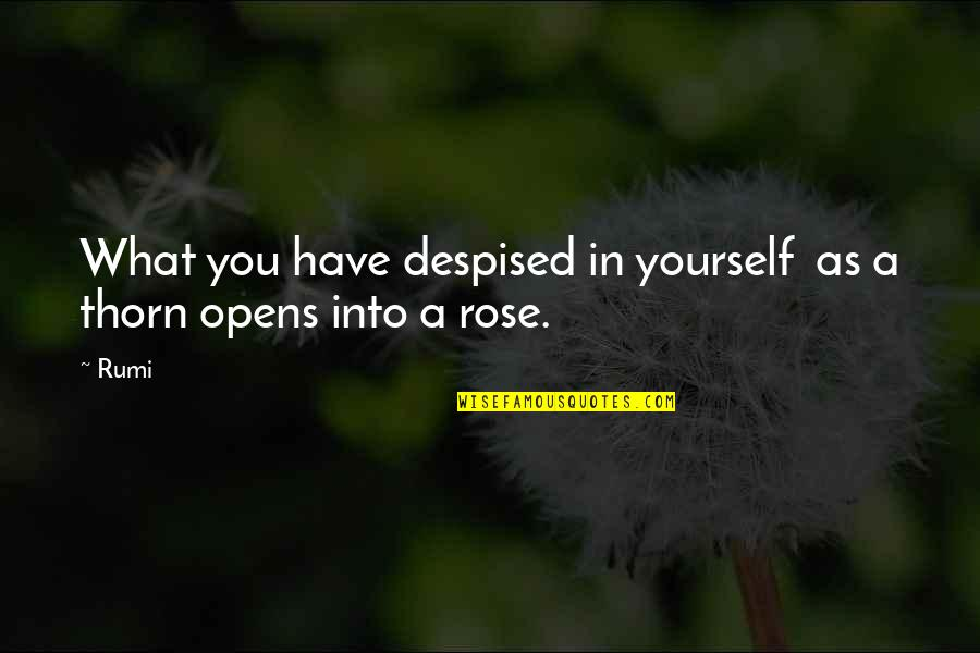 Despised Quotes By Rumi: What you have despised in yourself as a