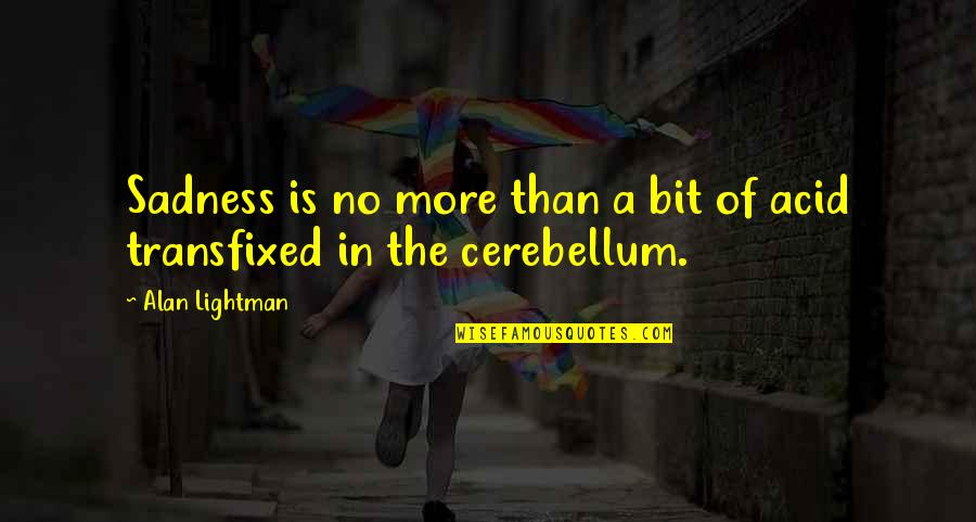 Dessenquin Quotes By Alan Lightman: Sadness is no more than a bit of