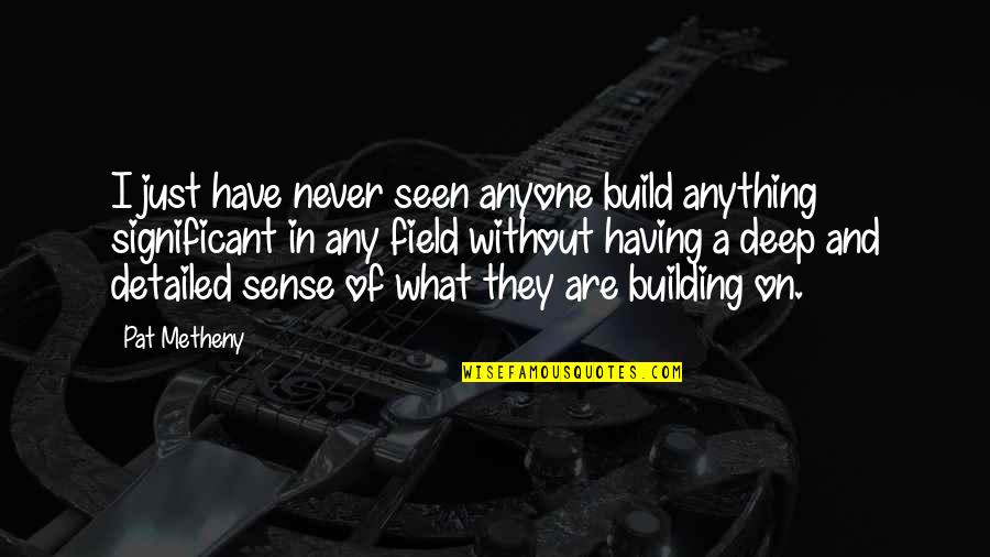 Detailed Building Quotes By Pat Metheny: I just have never seen anyone build anything