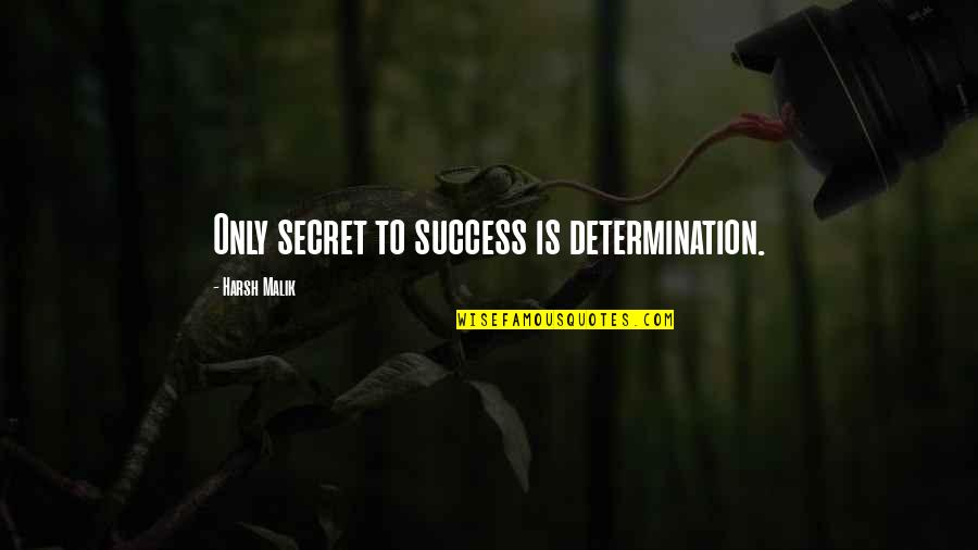 Determination To Success Quotes By Harsh Malik: Only secret to success is determination.