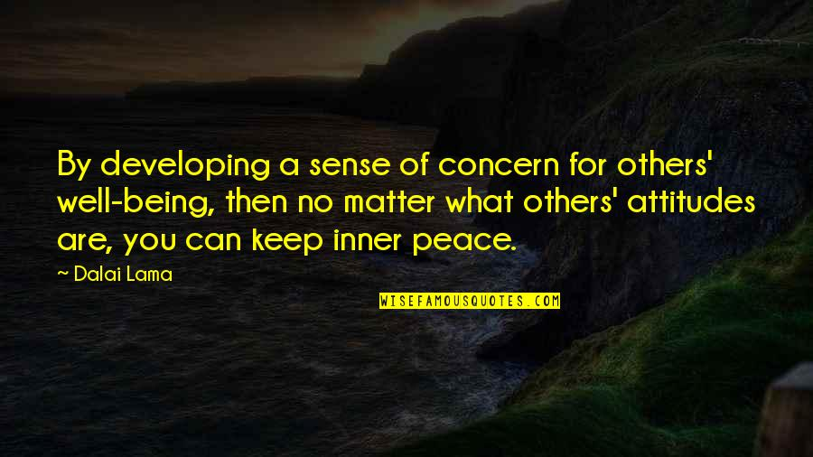 Developing Others Quotes By Dalai Lama: By developing a sense of concern for others'