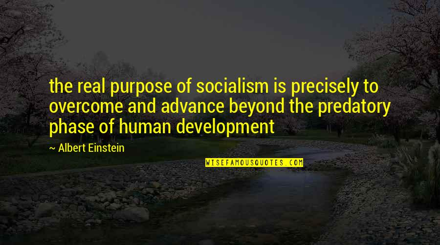 Development Of Society Quotes By Albert Einstein: the real purpose of socialism is precisely to