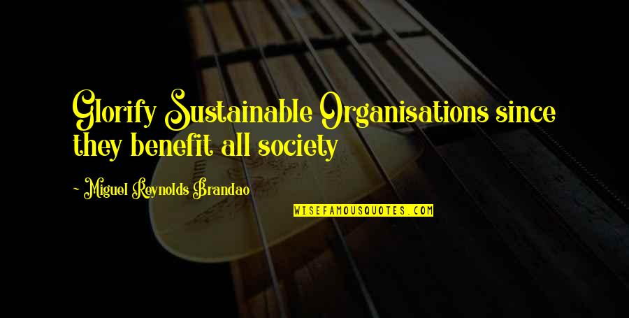 Development Of Society Quotes By Miguel Reynolds Brandao: Glorify Sustainable Organisations since they benefit all society
