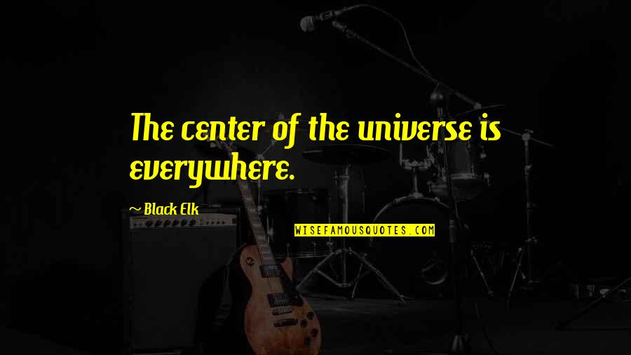 Developmental Psychologist Quotes By Black Elk: The center of the universe is everywhere.