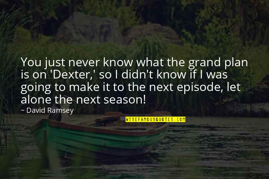Dexter's Quotes By David Ramsey: You just never know what the grand plan