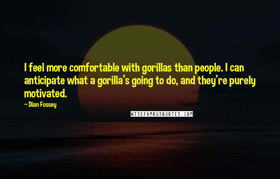 Dian Fossey quotes: I feel more comfortable with gorillas than people. I can anticipate what a gorilla's going to do, and they're purely motivated.