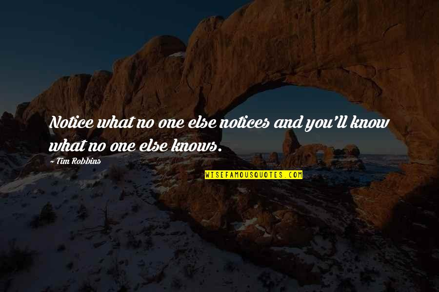 Diane Von Furstenberg Inspirational Quotes By Tim Robbins: Notice what no one else notices and you'll