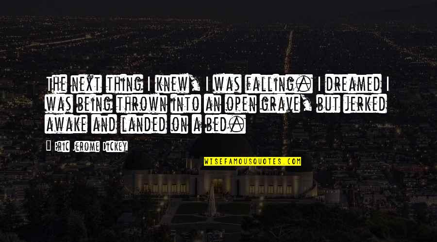 Dickey's Quotes By Eric Jerome Dickey: The next thing I knew, I was falling.
