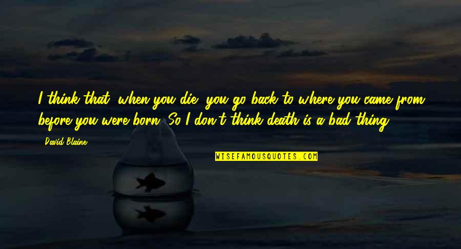 Die Before You Die Quotes By David Blaine: I think that, when you die, you go