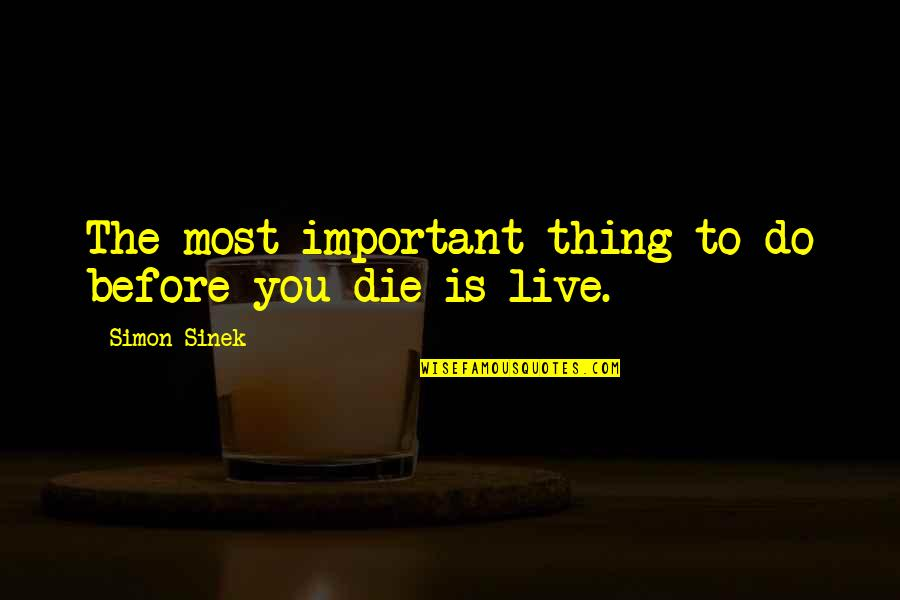 Die Before You Die Quotes By Simon Sinek: The most important thing to do before you