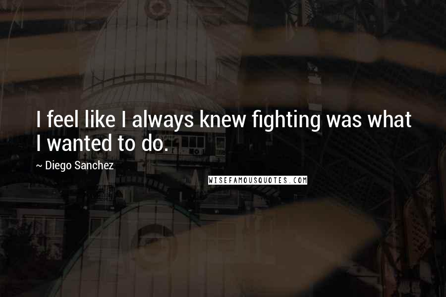Diego Sanchez quotes: I feel like I always knew fighting was what I wanted to do.