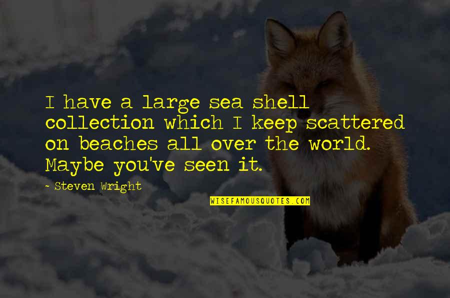 Differences Quotes And Quotes By Steven Wright: I have a large sea shell collection which