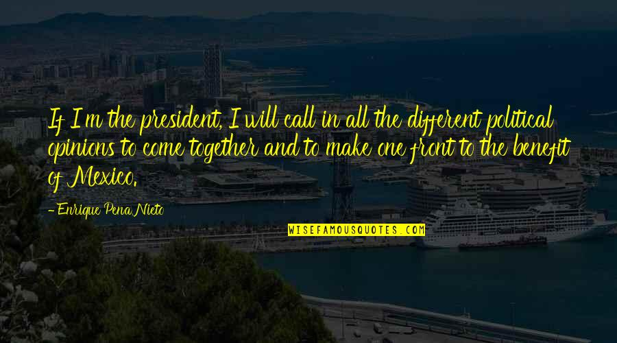 Different But Together Quotes By Enrique Pena Nieto: If I'm the president, I will call in