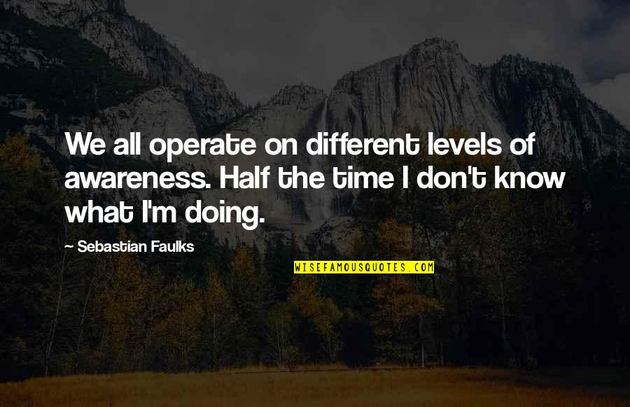 Different Levels Quotes By Sebastian Faulks: We all operate on different levels of awareness.