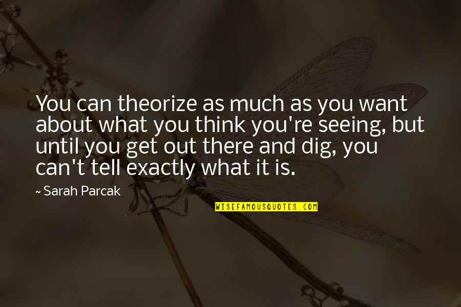 Dig Out Quotes By Sarah Parcak: You can theorize as much as you want