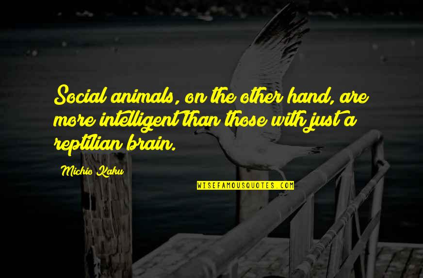 Dignity Of Labor Quotes By Michio Kaku: Social animals, on the other hand, are more